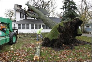 Josh Moritz, an employee of B & L Shortridge Tree Service, Port Clinton, cuts up a limb from a tree that fell into a house at the corner of Sycamore and W. Sixth Street in Lakeside, Ohio.