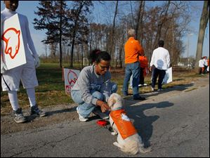 While her son, Aidan, 17, watches, Karen Sanders, center, puts the finishing touches of school spirit on her dog, Pappy.