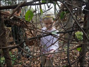 Perrysburg resident Clare Wellstein, 4, adds sticks to a large nest in the backyard of the activity building.