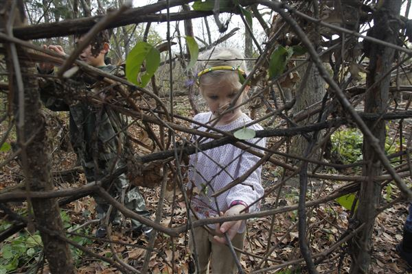 Backyard Nature Preserve :  squirrel nest built by people at Knight Nature Preserve  The Blade
