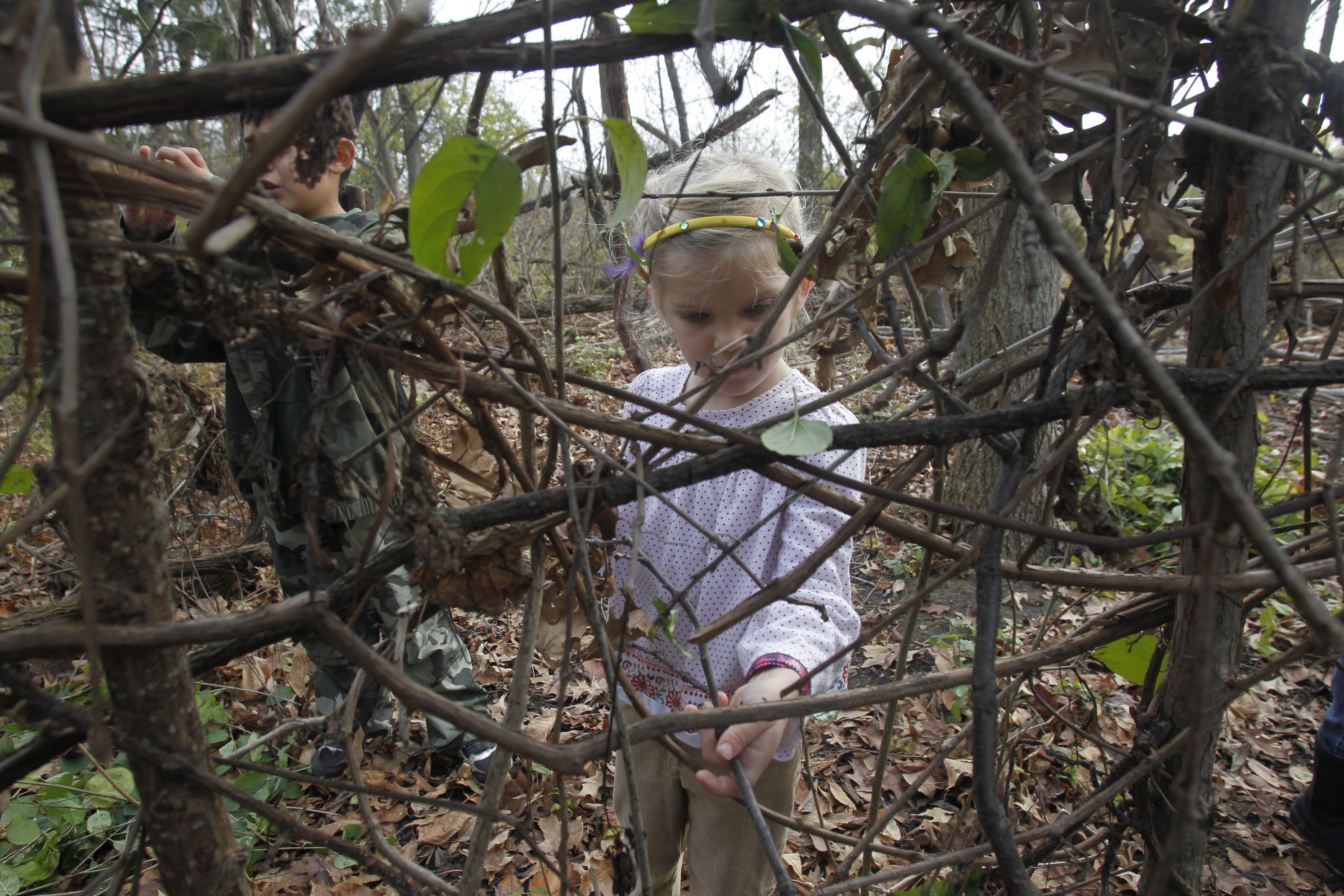 giant squirrel nest built by people at knight nature preserve