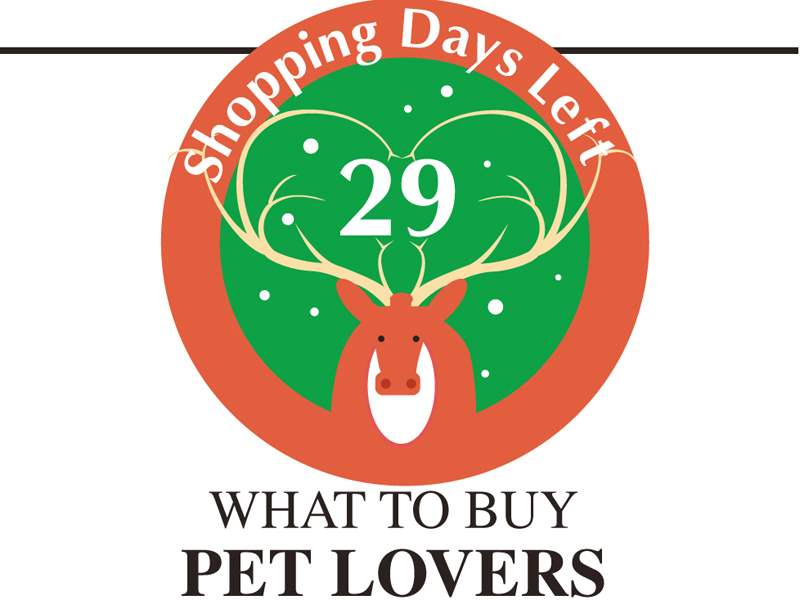 Pet-lovers-11-26