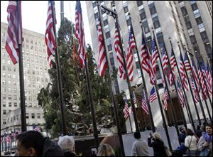 Tthe 80th Rockefeller Center Christmas Tree, a Norway Spruce, donated by Joseph Balku, of Flanders, N.J., is raised in New York City earlier this month. The tree will be lit today.