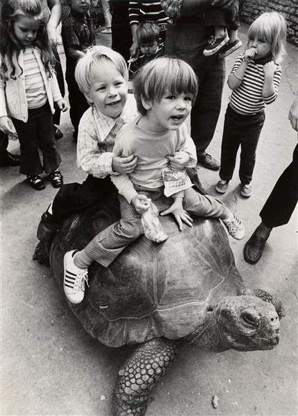 cty-TORTOISE-RIDE-AT-ZOO-jpg