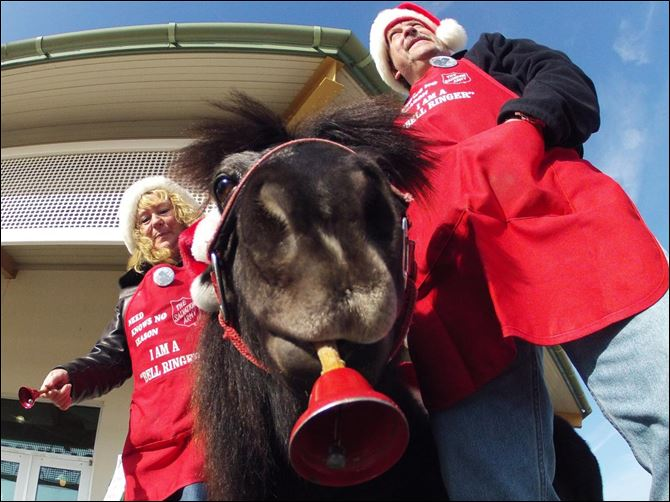 Tinker, a miniature horse, rings a red bell Tinker, a miniature horse, rings a red bell for the Salvation Army outside a craft fair in West Bend, Wis. with his owners Carol and Joe Takacs. Salvation Army officials say Tinker raises 10 times more than a regular bell ringer.