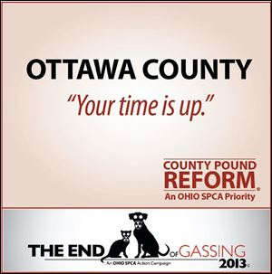 The Ohio Society for the Prevention of Cruelty to Animals is targeting Ottawa County in the effort to stop gassing as a method of killing dogs. Hocking and Perry counties in southeast Ohio also gas dogs.