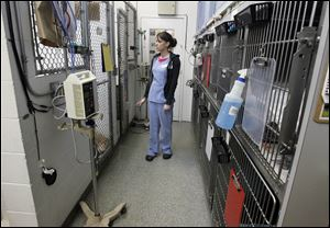 The kennel area of the old Animal Emergency and Critical Care Center of Toledo building on W. Central Ave.
