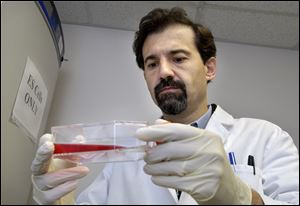 Jose Cibelli, holding a container of embryonic stem cells in his Michigan State University lab, has been involved with ground-breaking embryo cloning experiments.