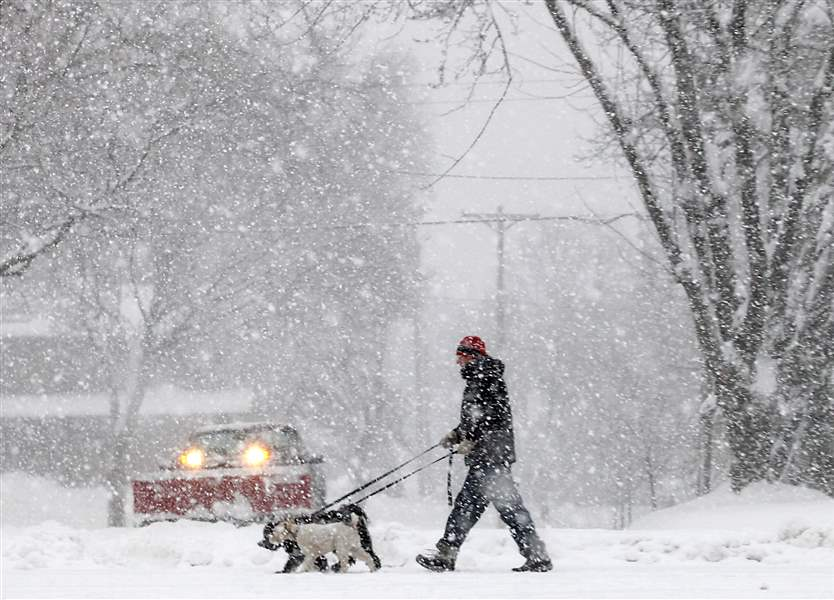Winter-Storm-man-walking-dogs