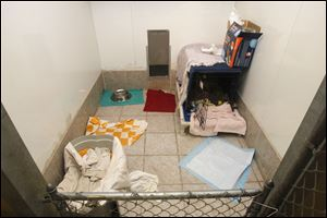 Jane Huth set up this pen area for  Cindy Lou Who at her Oregon shelter. Cindy Lou Who is the first beneficiary of Cutie's Fund.