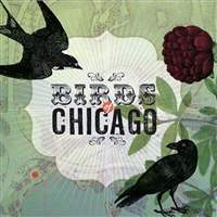 Birds-of-Chicago-2
