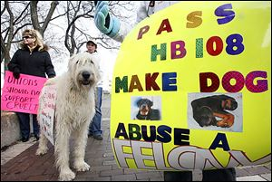 Animal activists Lynda Picard, left, and Kimm Penn protest with Ms. Penn's Irish wolfhound, Finnegan, outside Toledo Municipal Court before the animal-cruelty trial of Aaron Nova.