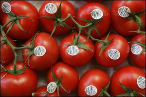 A proposed agreement on fresh tomatoes imported from Mexico would strengthen anti-dumping enforcement and reset minimum wholesale prices, the Commerce Department said. The agreement with Mexico's tomato industry would suspend an investigation initiated after Florida tomato growers complained that Mexican producers were selling fresh tomatoes for less than the production cost.