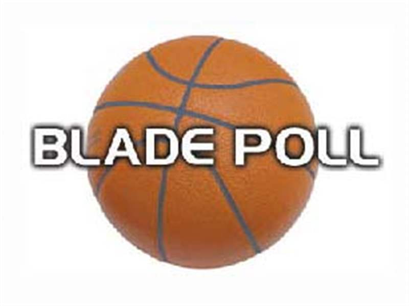 basketball-poll-blade