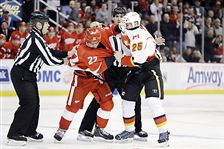 Flames-Red-Wings-fight