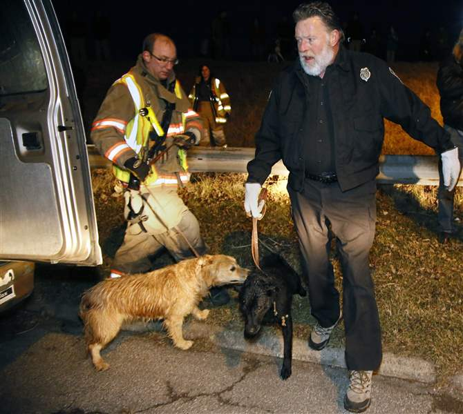 Dog-rescue-Maumee-Bay