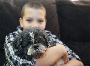 Breccan Rehard, 10, hugs Stevie. Breccan's mom, Kyle Piekarzewski of Planned Pethood, and family are fostering Stevie.