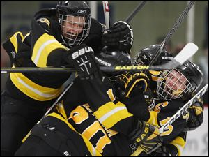Sylvania Northview's players surround Bailey Breitigam(20) after he scored in the second period against St. John's.