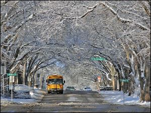 Snow-covered trees form a scenic canopy over Avenue C in Bismarck, N.D. today in the wake of a slow moving winter storm.