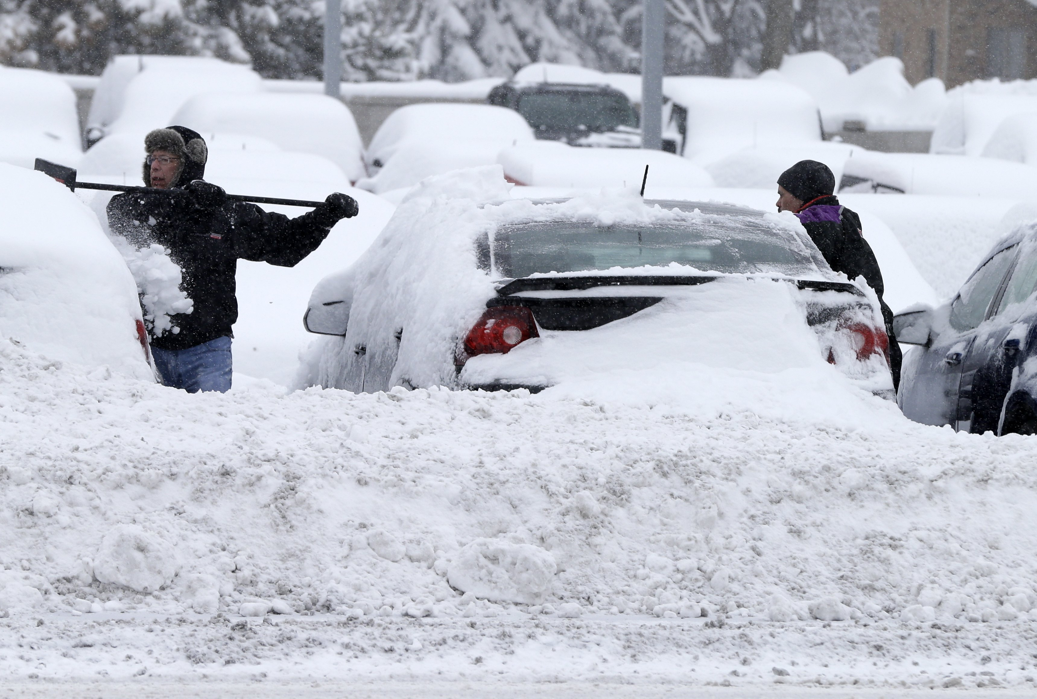 Winter Storm: Winter Clings To Its Final Weeks As Snowstorm Rolls