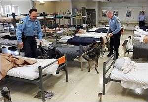 Toledo police Officer John Greenwood and his dog, Tanko, left, and Officer Brian Gaylord, with his dog, Wespe, conduct a drug sweep in a dorm at the Centralized Drug Testing Unit in Toledo.