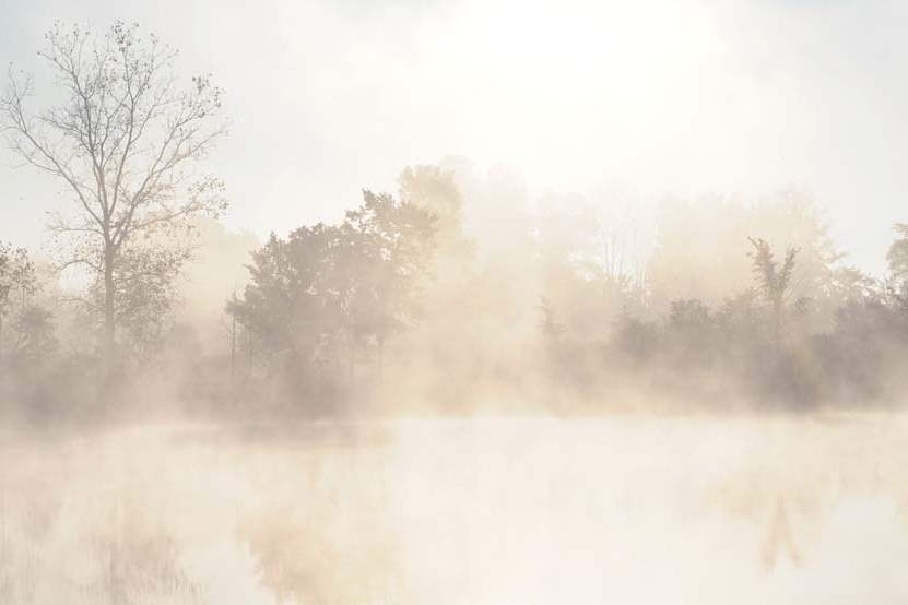 Quarry-Pond-Fall-fog-dawn-051-jpg