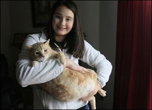 Emily English of Maumee holds her cat Elmer. The cat was skinny when she first rescued him, but ate and ate to make up for all the meals he missed. He now tops the scale at 19.5 pounds — and  that's actually down from about 23 pounds.