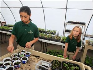 Angelina Mata, a fourth grader, preps for the school's Saturday plant sale while second grader Sofia Ellis carries water for the plants.