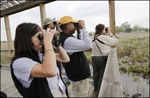 A Black Swamp Bird Observatory group studies the view Pearson Metropark in Oregon. From left, are Judy Kolo-Rose of Oak Harbor, Ohio; Doug Baker of Ber-gen, N.Y.; Doug Gray of Franklin, Ind.; and Cindy Dooley of Grosse Pointe, Mich.