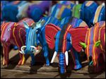 Finished toy animals made from pieces of discarded flip-flops are laid out in rows to dry in the sun, having just been washed, at the Ocean Sole flip-flop recycling company in Nairobi, Kenya.