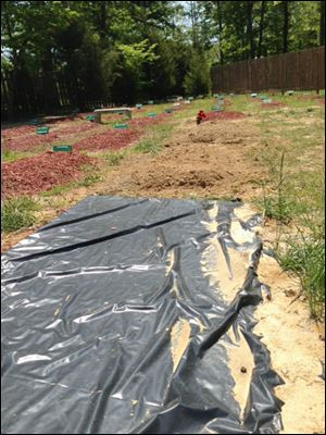 The alleged burial site of Boston Marathon bombing suspect Tamerlan Tsarnaev is covered in Doswell, Va.