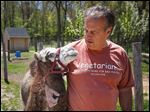 Indian Creek Camel Farm owner Joe Garverick recently bought 3-month-old Rembrandt for his farm in Lambertville. With the addition of Rembrandt, the farm has nearly two dozen camels.
