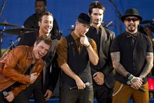 Backstreet-Boys-Toledo-Zoo-concert