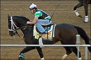Exercise rider Rudy Quevedo trots Preakness Stakes entrant Titletown Five during a workout for Saturday's Preakness.