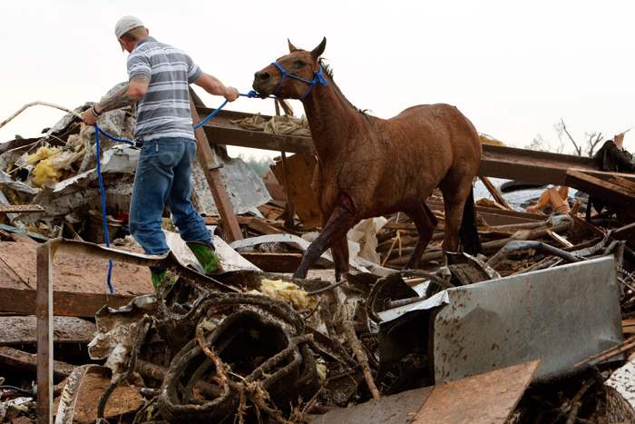Rescuers-recover-a-horse-from-the-remains