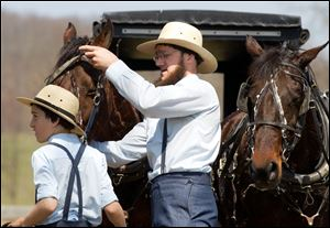 FILE - In this April 9, 2013 file photo, Freeman Burkholder, right, takes the headpiece off of his horse in Bergholz, Ohio.  Bergholder and other Amish now imprisoned in beard-cutting attacks on fellow Amish in Ohio have been granted a religious freedom exemption from a requirement to attend high-school e