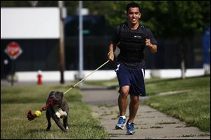 Toledo resident Omar Smiley runs with one-year-old pit-bull shepherd mix 'Cotter' at the Lucas County Dog Warden.