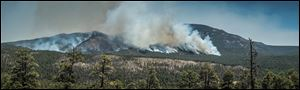 The Thompson Ridge fire burns in an area just north of the town of Jemez Springs, New Mexico, Saturday.