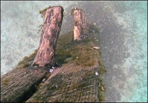 In this October 2012 image from video provided by David J. Ruck, timbers protrude from the bottom of Lake Michigan.