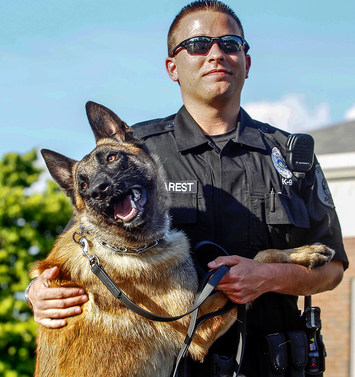 Dog Training Sylvania Ohio