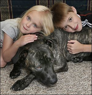 Tyler Bork, 10, and his sister Kayla Bork, 5, of Swanton, play with their mixed-breed dog, Bailey. A village ordi-nance requires muzzling Bailey when she's in public.