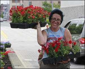 Courtney Billian of Toledo carries two of the 75 flats of flowers the volunteer groups UpTown Association and the First Alliance Church are planting.