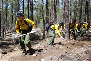 In this 2012 photo provided by the Cronkite News, the Granite Mountain Hotshot crew clears a fire line through the forest.