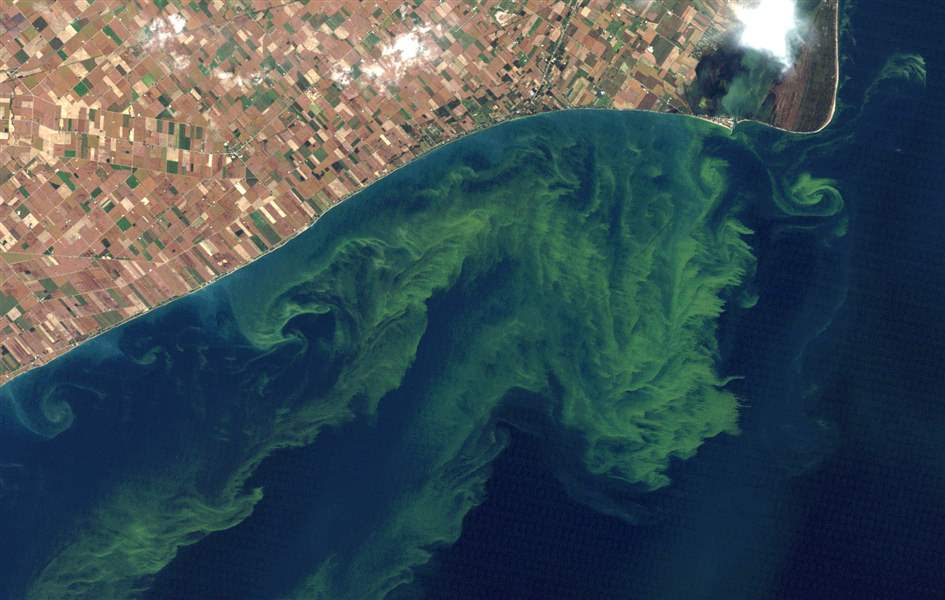 Lake-Erie-Runaway-Algae-1