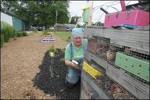 Karen Wood of Bowling Green readies an 'insect hotel' for Lucas County fair-goers to view. Girl Scouts and 4-H members helped build it as part of a Pollinator Garden at the Maumee fairgrounds.