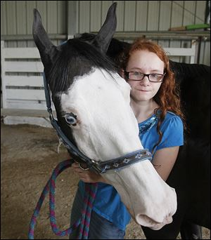 Sydney Arthur-Davis, 11, holds her blue-eyed paint Levi. A Stirrup-A-Bit 4-H club member, it is her first year to exhibit Levi and her third as a fair entrant.
