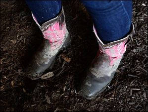 Thalia Salas, 15, of Holland, sported hot pink cowgirl boots as she cared for her three month-old Holstein calf.