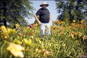 Jack Church stands amidst a portion of over 1,000 different varieties of daylilies, including hybridized  daylilies in Weston, Ohio.