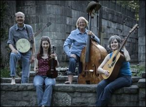 Cottonwood Jam String Band of, from left, Spencer Cunningham, Renata Burgett, Tahree Lane, and Marti Clayton.