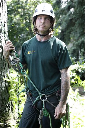 I've always been passionate about doing tree work,